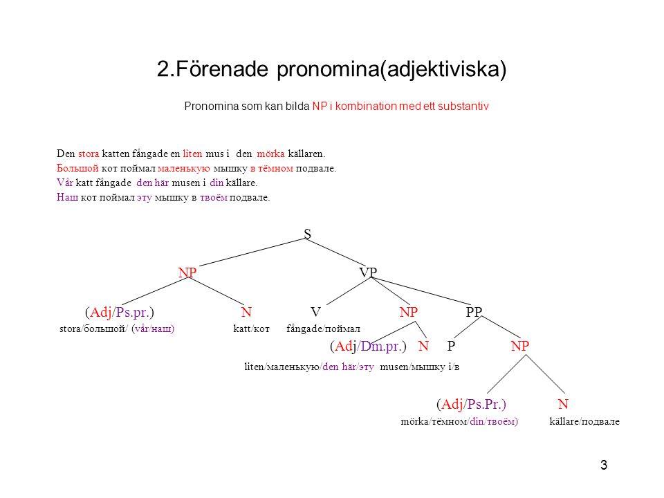 3 2.Förenade pronomina(adjektiviska) Pronomina som kan bilda NP i kombination med ett substantiv Den stora katten fångade en liten mus i den mörka källaren.
