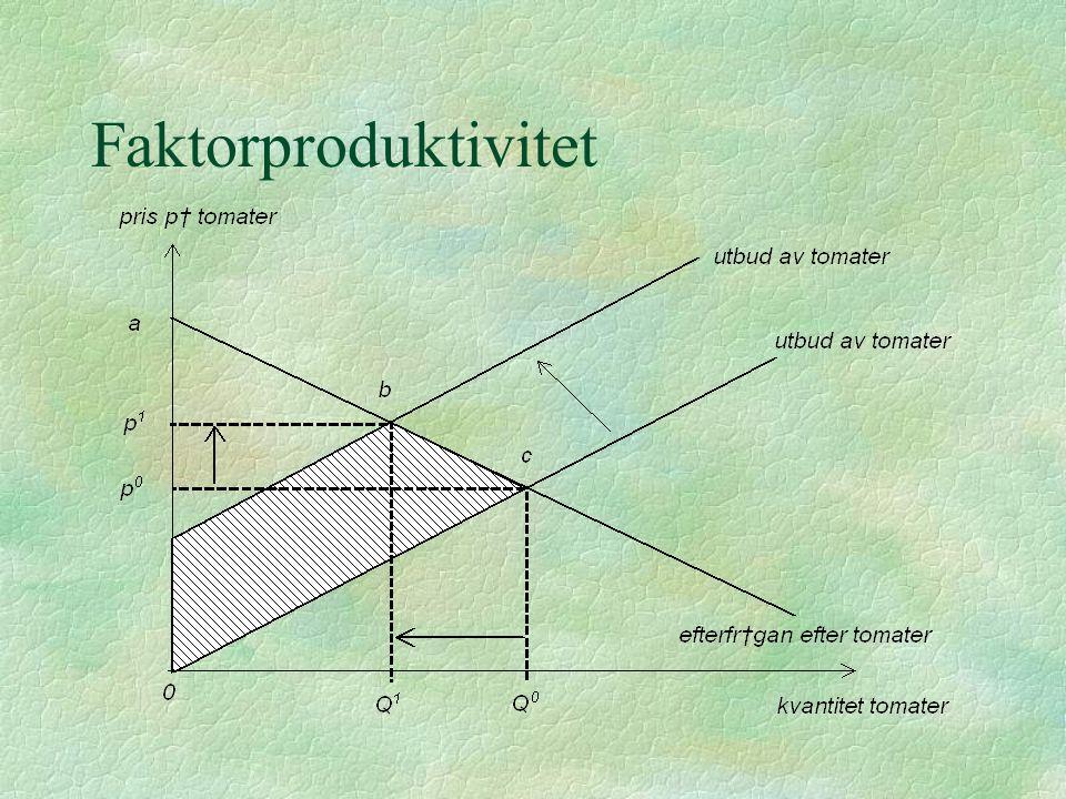 Faktorproduktivitet