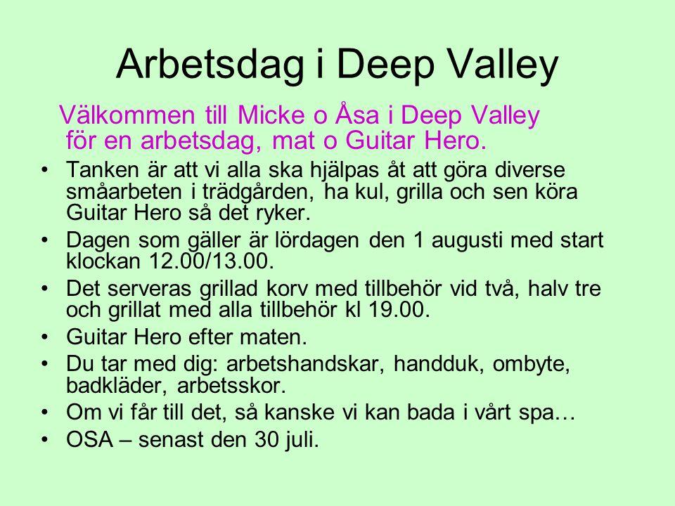 Arbetsdag i Deep Valley Välkommen till Micke o Åsa i Deep Valley för en arbetsdag, mat o Guitar Hero. Tanken är att vi alla ska hjälpas åt att göra di