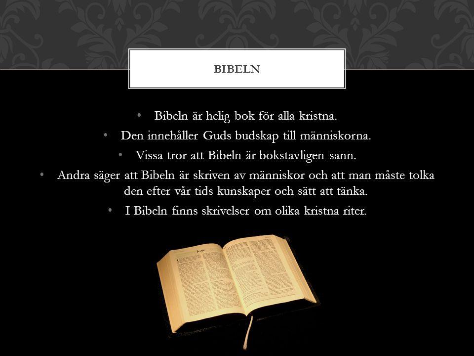 Bibeln är helig bok för alla kristna. Den innehåller Guds budskap till människorna. Vissa tror att Bibeln är bokstavligen sann. Andra säger att Bibeln