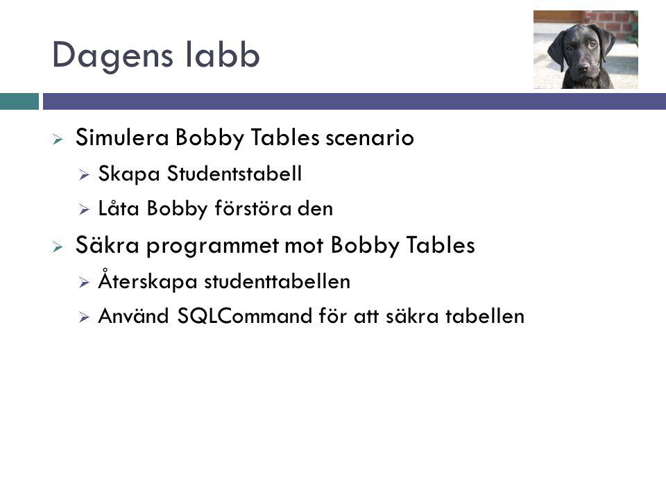 Dagens labb  Simulera Bobby Tables scenario  Skapa Studentstabell  Låta Bobby förstöra den  Säkra programmet mot Bobby Tables  Återskapa studenttabellen  Använd SQLCommand för att säkra tabellen
