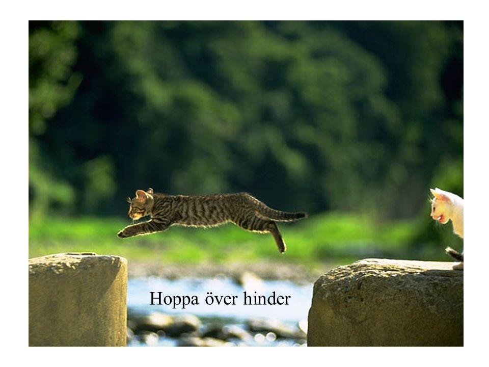 Hoppa över hinder