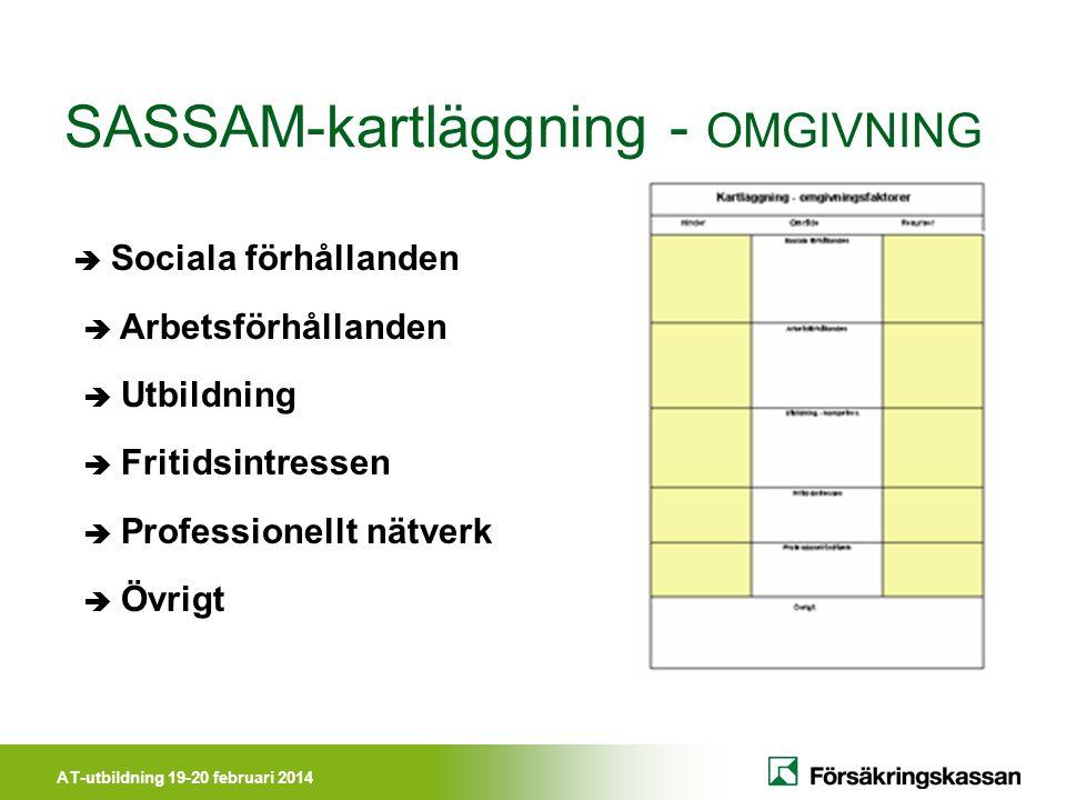 AT-utbildning 19-20 februari 2014 SASSAM-kartläggning - OMGIVNING  Sociala förhållanden  Arbetsförhållanden  Utbildning  Fritidsintressen  Professionellt nätverk  Övrigt