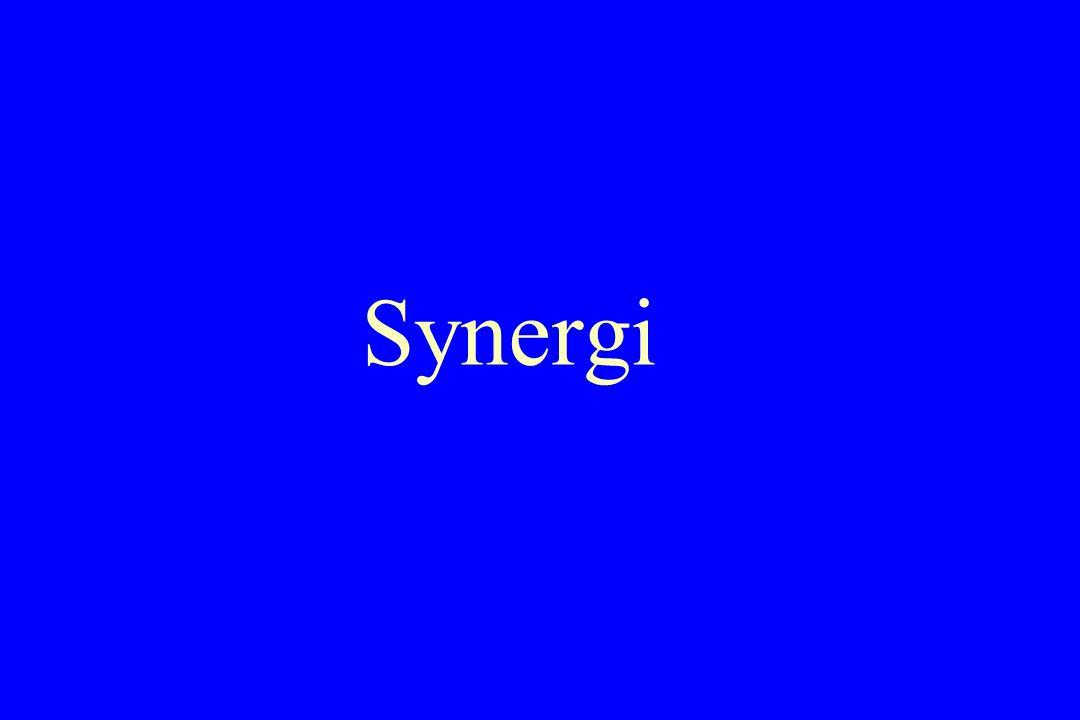 Synergi