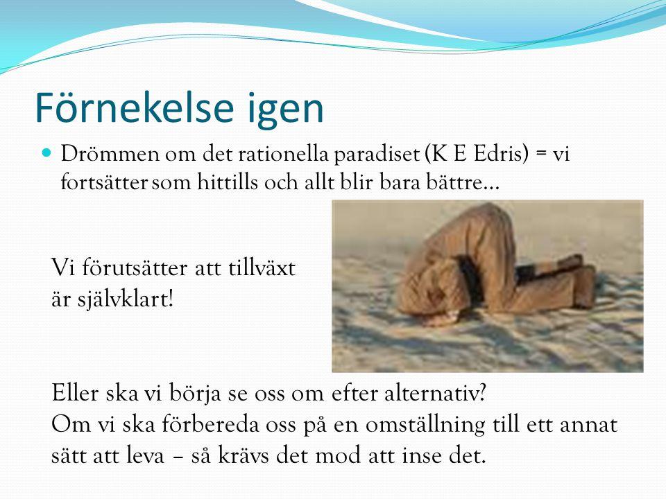 Förnekelse igen Drömmen om det rationella paradiset (K E Edris) = vi fortsätter som hittills och allt blir bara bättre… Eller ska vi börja se oss om e