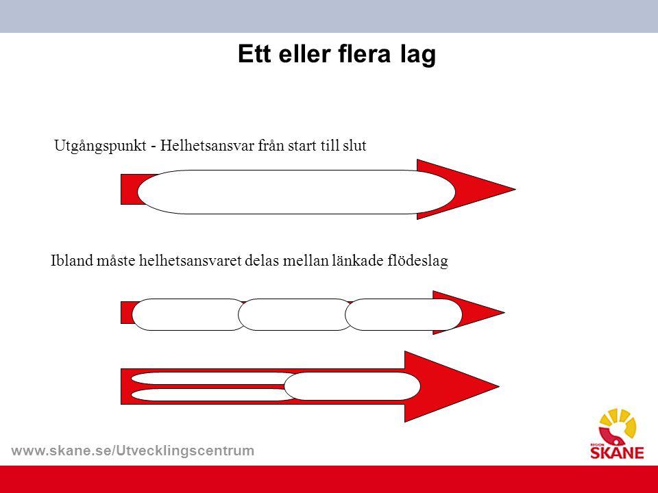 www.skane.se/Utvecklingscentrum Ett eller flera lag Utgångspunkt - Helhetsansvar från start till slut Ibland måste helhetsansvaret delas mellan länkad