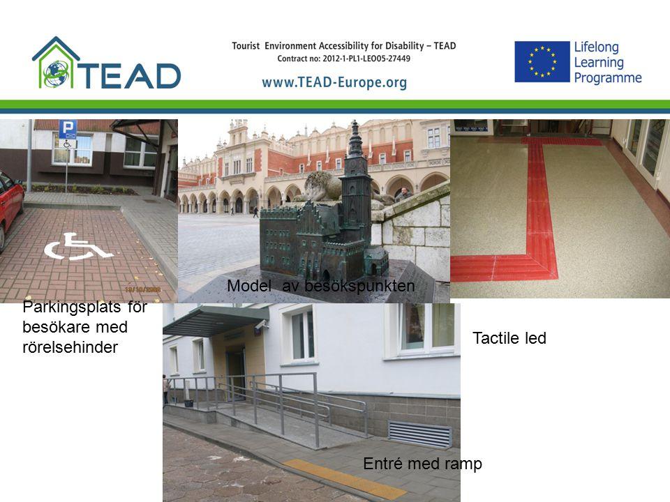 Podjazd dla wózków Entré med ramp Parkingsplats för besökare med rörelsehinder Model av besökspunkten Tactile led