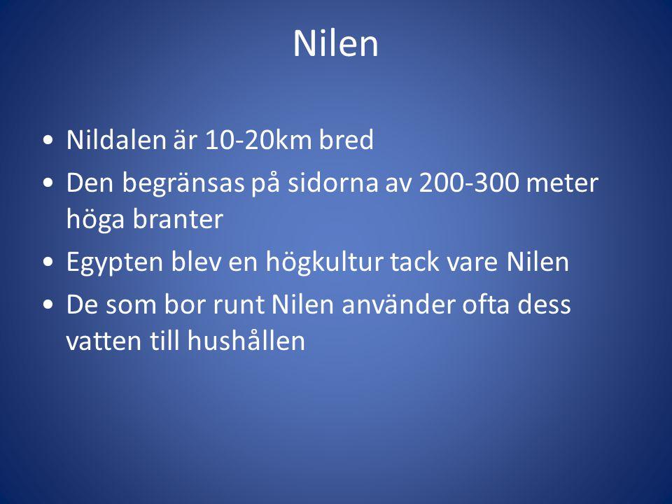 Nilen Nildalen är 10-20km bred Den begränsas på sidorna av 200-300 meter höga branter Egypten blev en högkultur tack vare Nilen De som bor runt Nilen