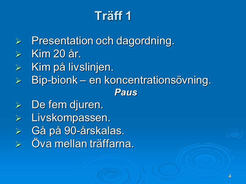 Träff 1  Presentation och dagordning.  Kim 20 år.  Kim på livslinjen.  Bip-bionk – en koncentrationsövning. Paus  De fem djuren.  Livskompassen.
