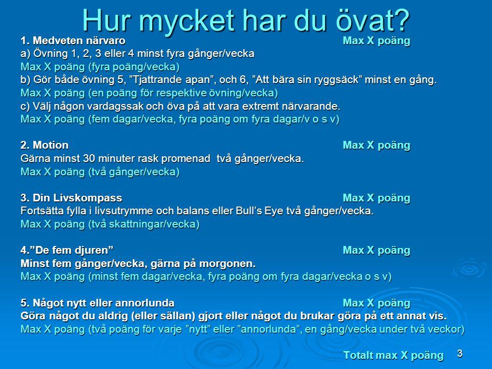 3 Hur mycket har du övat? 1. Medveten närvaroMax X poäng a) Övning 1, 2, 3 eller 4 minst fyra gånger/vecka Max X poäng (fyra poäng/vecka) b) Gör både