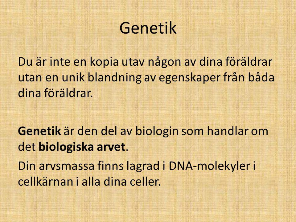 Genetik Du är inte en kopia utav någon av dina föräldrar utan en unik blandning av egenskaper från båda dina föräldrar. Genetik är den del av biologin