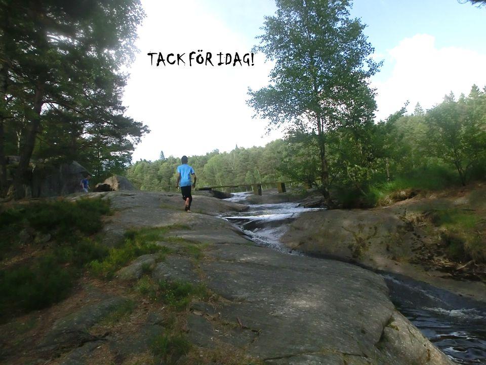 www.gu.se TACK FÖR IDAG!