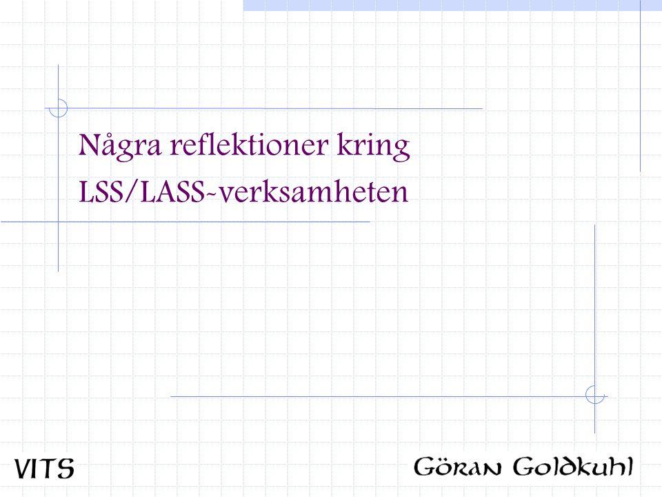 Några reflektioner kring LSS/LASS-verksamheten