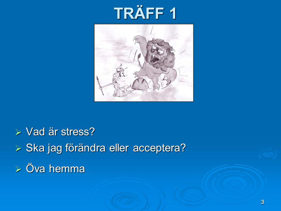 3 TRÄFF 1  Vad är stress?  Ska jag förändra eller acceptera?  Öva hemma