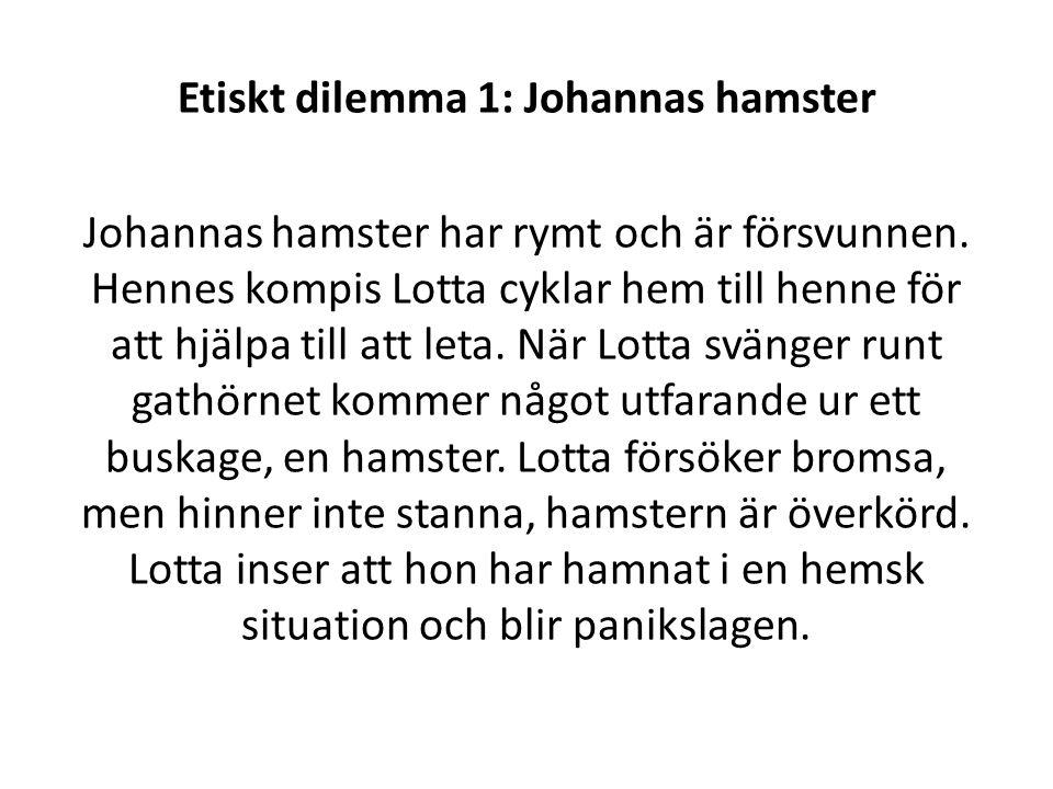 Etiskt dilemma 1: Johannas hamster Johannas hamster har rymt och är försvunnen. Hennes kompis Lotta cyklar hem till henne för att hjälpa till att leta