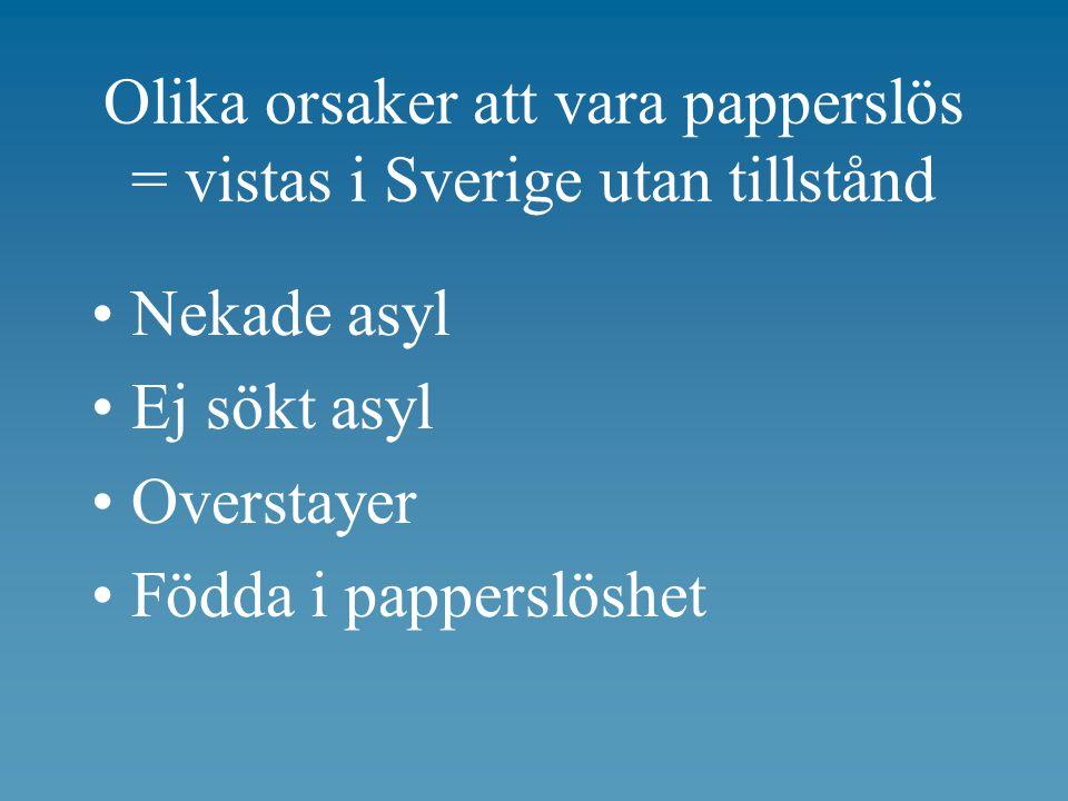 Olika orsaker att vara papperslös = vistas i Sverige utan tillstånd Nekade asyl Ej sökt asyl Overstayer Födda i papperslöshet