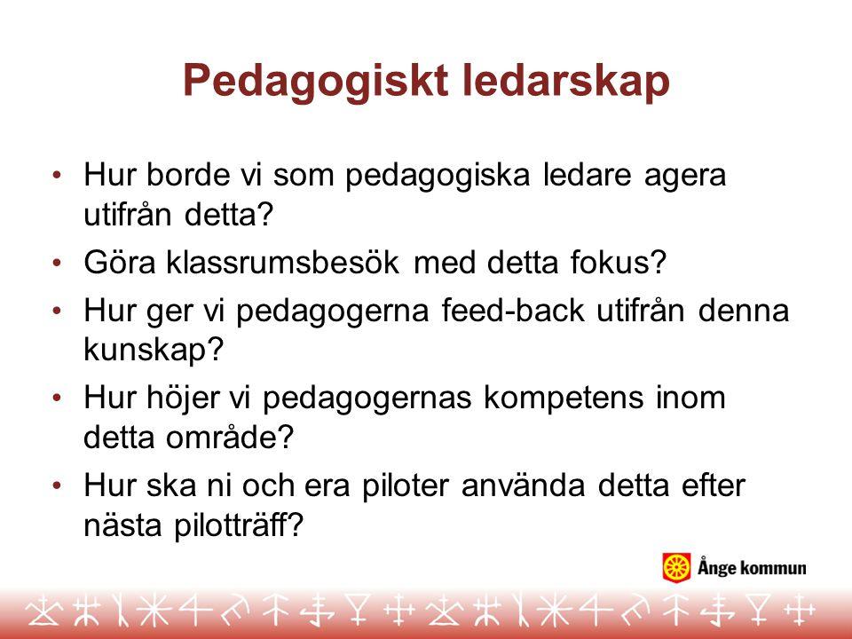 Pedagogiskt ledarskap Hur borde vi som pedagogiska ledare agera utifrån detta? Göra klassrumsbesök med detta fokus? Hur ger vi pedagogerna feed-back u