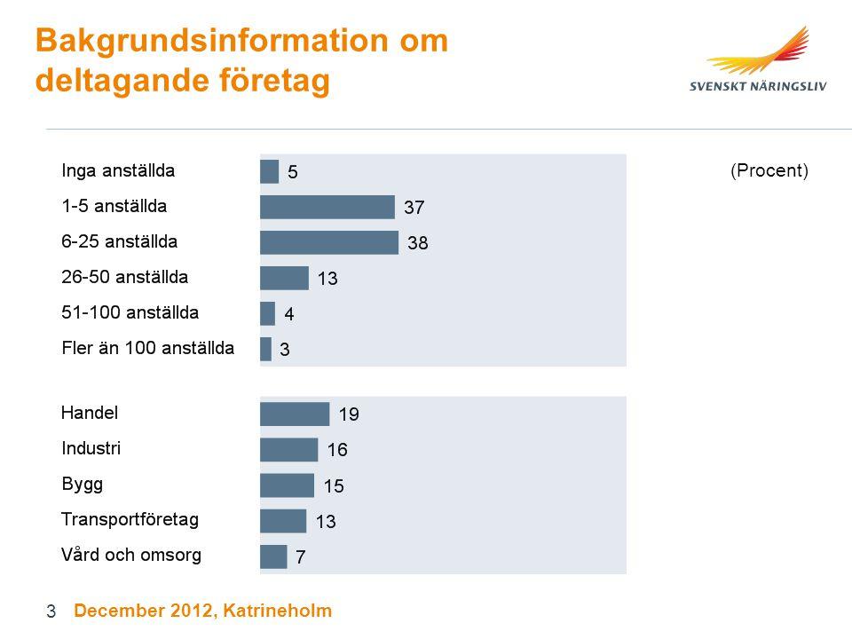 3 Bakgrundsinformation om deltagande företag (Procent) December 2012, Katrineholm