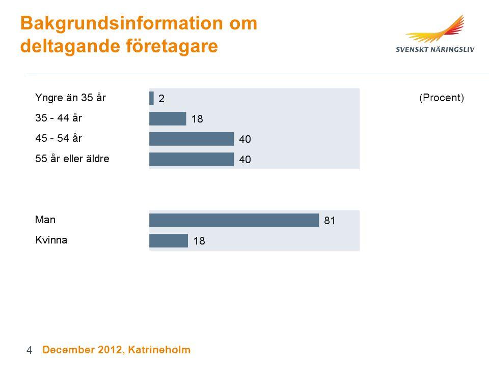 Bakgrundsinformation om deltagande företagare (Procent) December 2012, Katrineholm 4