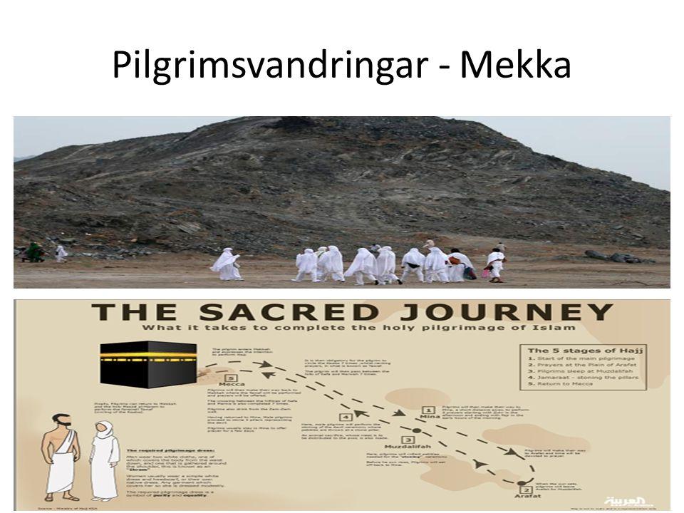 Pilgrimsvandringar - Mekka