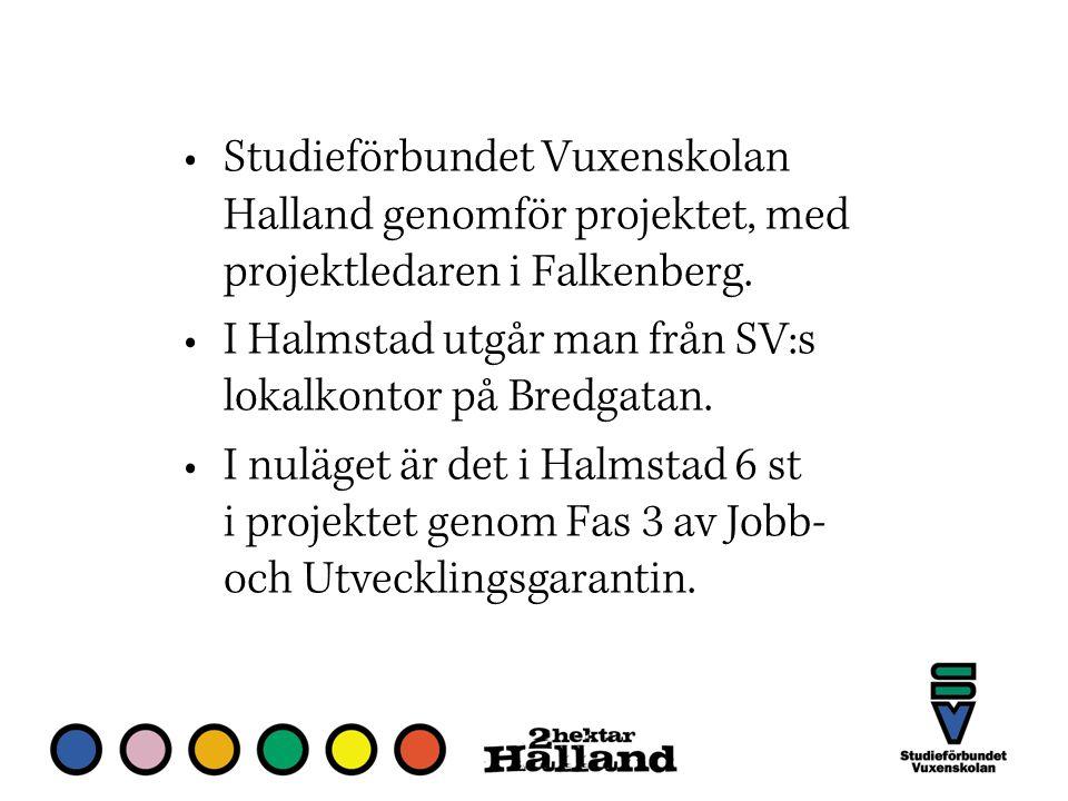 Studieförbundet Vuxenskolan Halland genomför projektet, med projektledaren i Falkenberg.