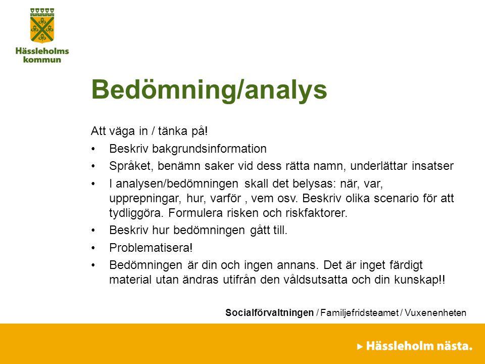 Socialförvaltningen / Familjefridsteamet / Vuxenenheten Bedömning/analys Att väga in / tänka på! Beskriv bakgrundsinformation Språket, benämn saker vi