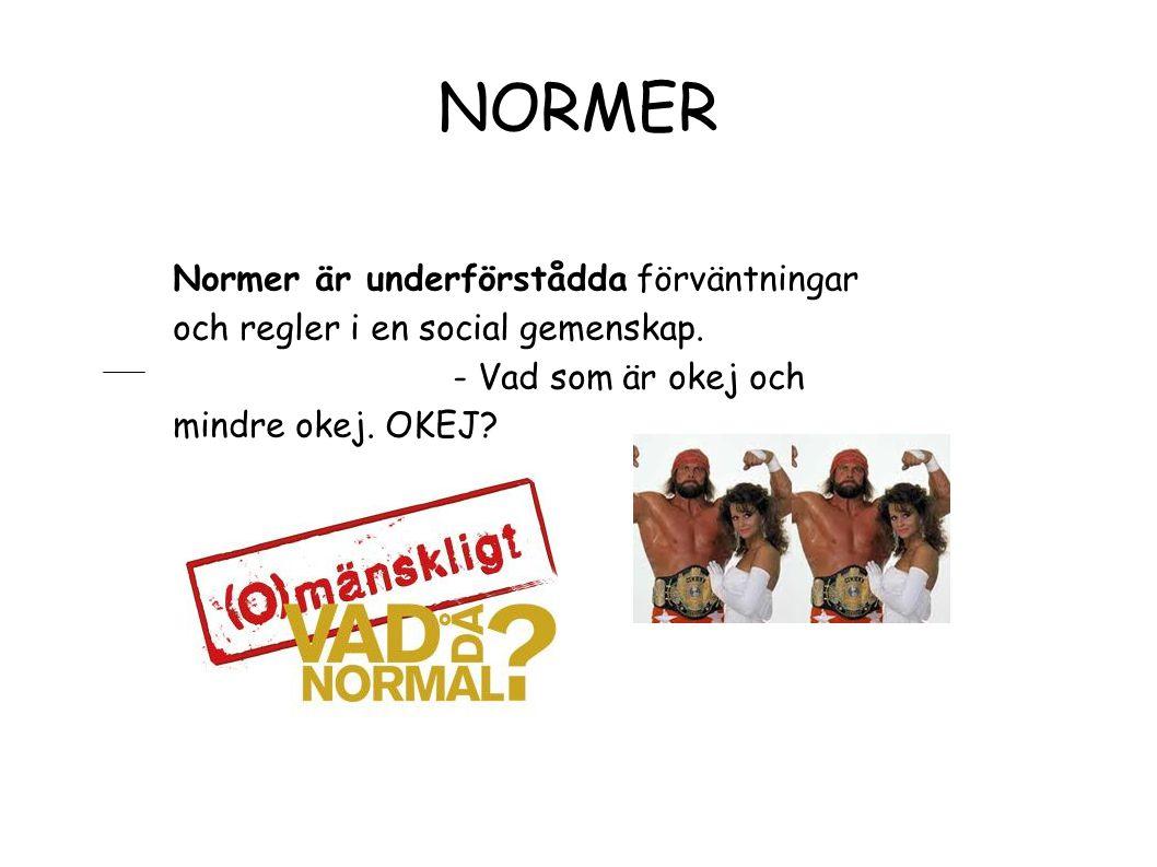 NORMER Normer är underförstådda förväntningar och regler i en social gemenskap. - Vad som är okej och mindre okej. OKEJ?