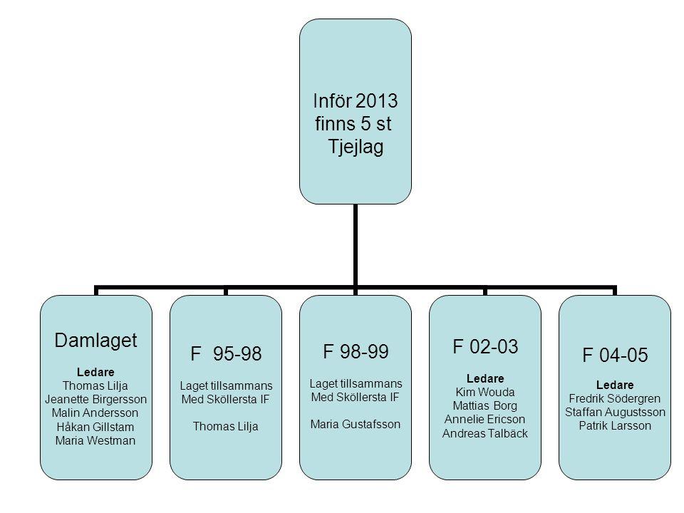 Inför 2013 finns 5 st Tjejlag Damlaget Ledare Thomas Lilja Jeanette Birgersson Malin Andersson Håkan Gillstam Maria Westman F 95-98 Laget tillsammans