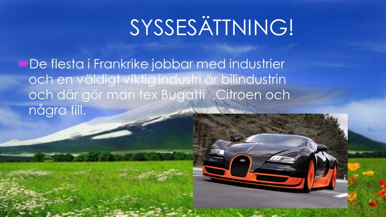  De flesta i Frankrike jobbar med industrier och en väldigt viktig industri är bilindustrin och där gör man tex Bugatti,Citroen och några till. SYSSE
