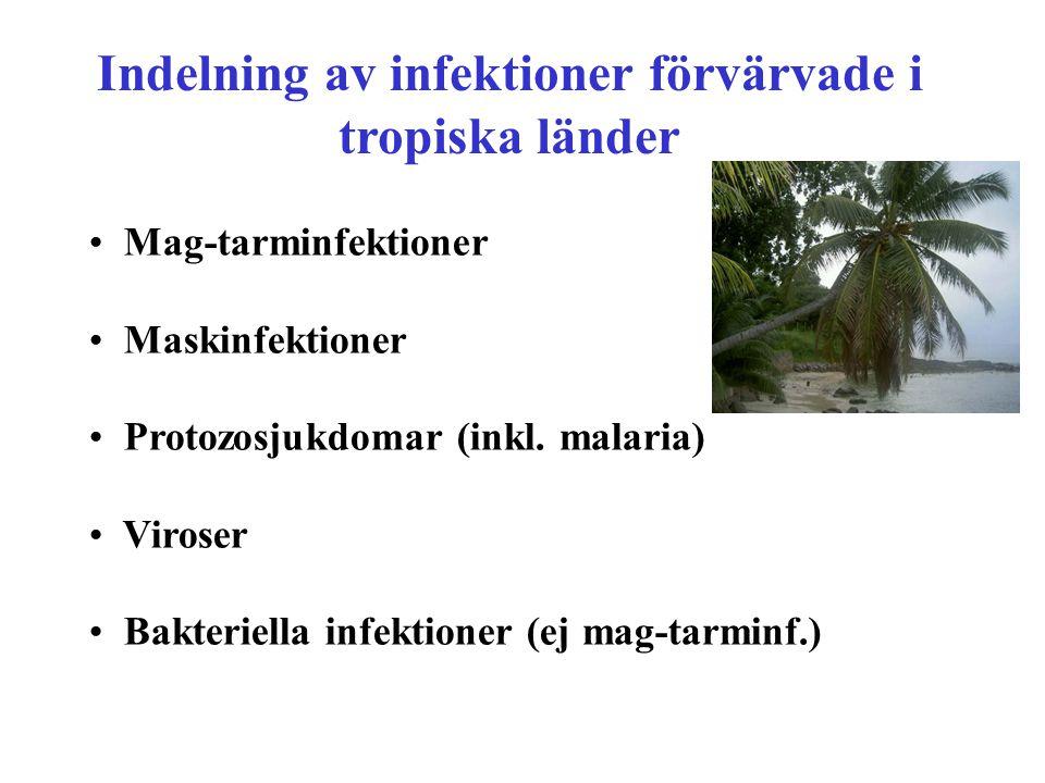 Indelning av infektioner förvärvade i tropiska länder Mag-tarminfektioner Maskinfektioner Protozosjukdomar (inkl. malaria) Viroser Bakteriella infekti