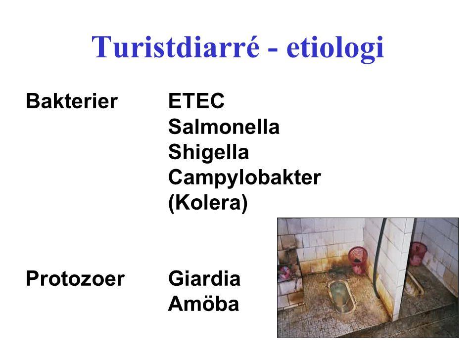 Turistdiarré - etiologi BakterierETEC Salmonella Shigella Campylobakter (Kolera) ProtozoerGiardia Amöba
