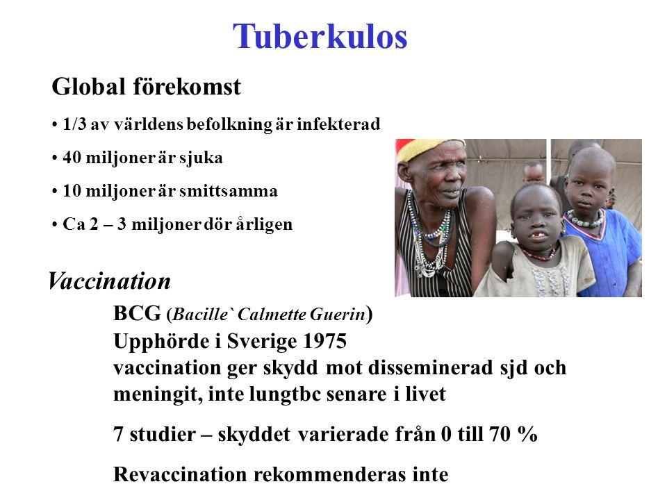 Tuberkulos Global förekomst 1/3 av världens befolkning är infekterad 40 miljoner är sjuka 10 miljoner är smittsamma Ca 2 – 3 miljoner dör årligen Vacc