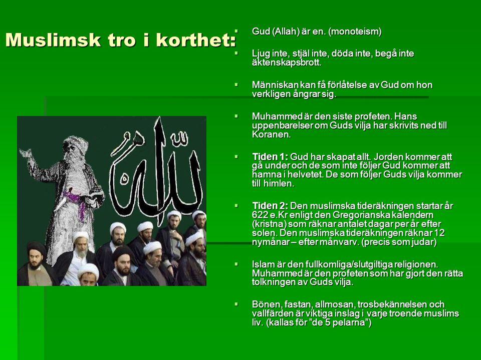 Muslimsk tro i korthet:  Gud (Allah) är en. (monoteism)  Ljug inte, stjäl inte, döda inte, begå inte äktenskapsbrott.  Människan kan få förlåtelse