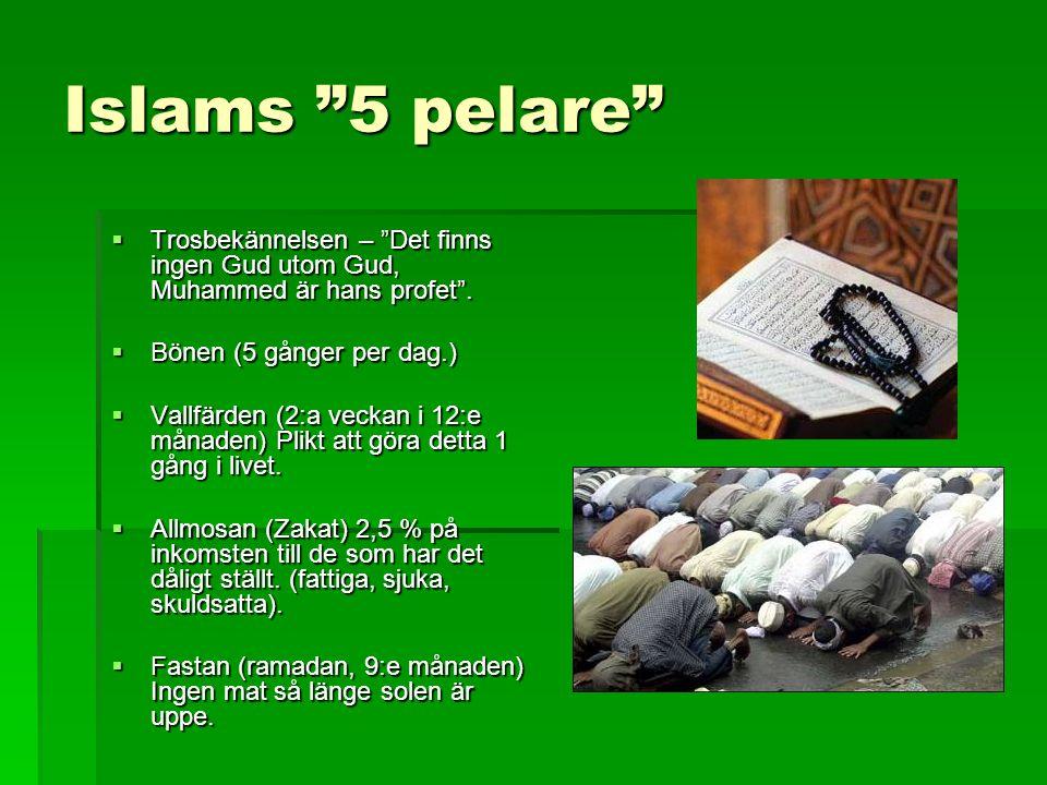 """Islams """"5 pelare""""  Trosbekännelsen – """"Det finns ingen Gud utom Gud, Muhammed är hans profet"""".  Bönen (5 gånger per dag.)  Vallfärden (2:a veckan i"""