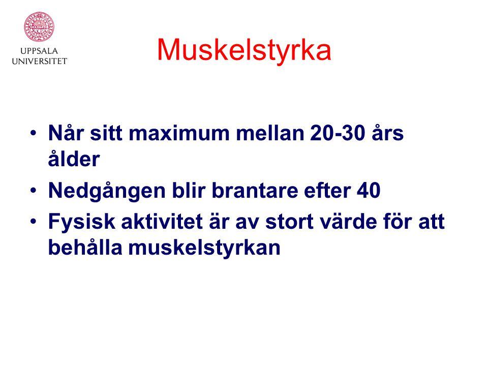 Muskelstyrka Når sitt maximum mellan 20-30 års ålder Nedgången blir brantare efter 40 Fysisk aktivitet är av stort värde för att behålla muskelstyrkan