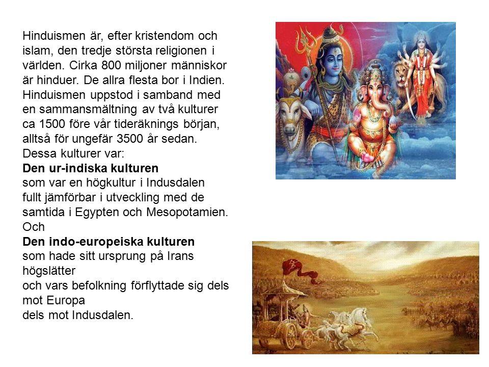 Hinduismen är, efter kristendom och islam, den tredje största religionen i världen. Cirka 800 miljoner människor är hinduer. De allra flesta bor i Ind