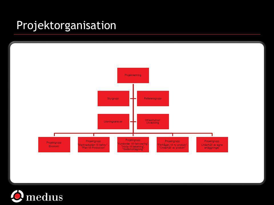 """ Medius AB Projektorganisation Projektledning Projektgrupp Ekonomi Projektgrupp """"Marknadsplan till behov"""", """"Plan till Produktion"""" Projektgrupp """"Kundo"""