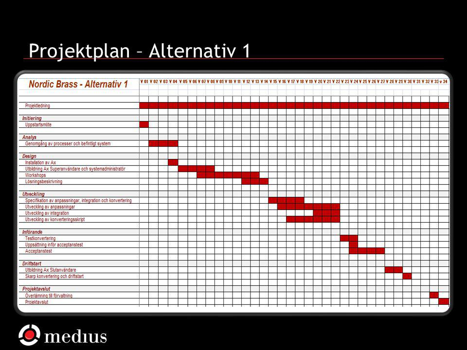  Medius AB Projektplan – Alternativ 1