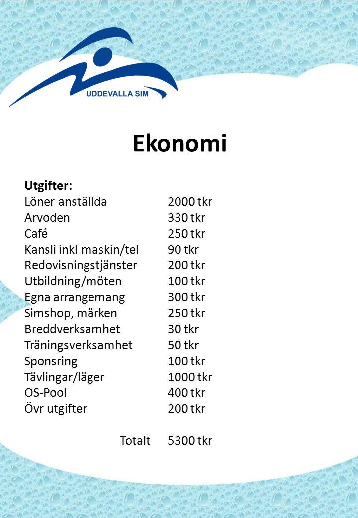 Ekonomi Utgifter: Löner anställda2000 tkr Arvoden330 tkr Café250 tkr Kansli inkl maskin/tel90 tkr Redovisningstjänster200 tkr Utbildning/möten100 tkr