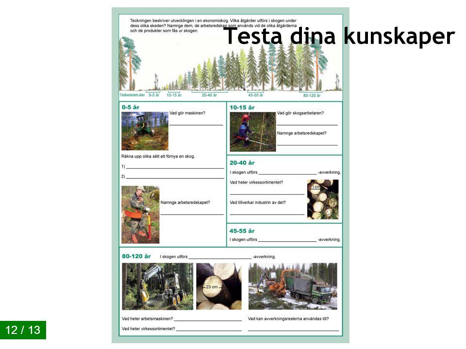 Ekonomiskogen 01/2011 Exempel på produkter av massaved 11 / 13 Har trädslagen någon betydelse