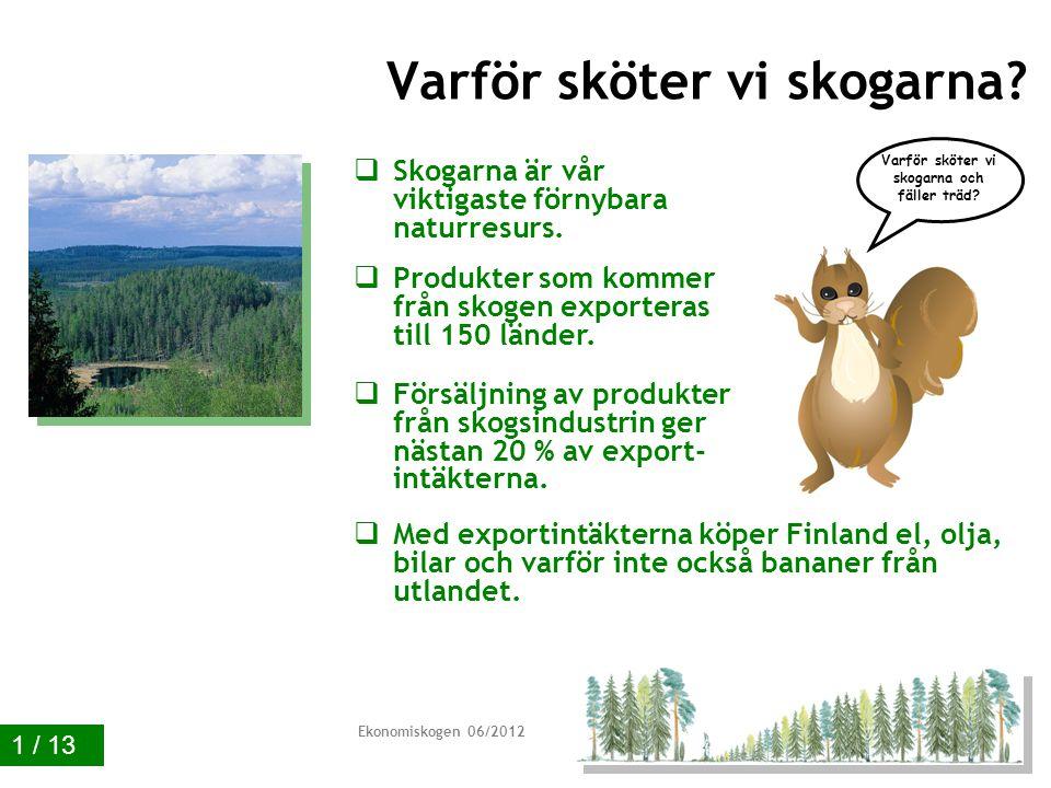 Ekonomiskogen 01/2011 Exempel på produkter av massaved 11 / 13 Har trädslagen någon betydelse?