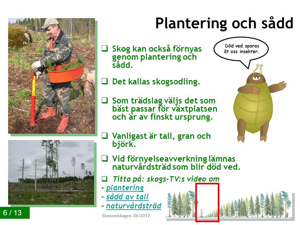  Naturlig förnyelse används när växtplatsen passar för det.