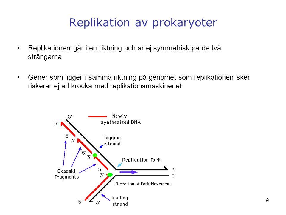 9 Replikation av prokaryoter Replikationen går i en riktning och är ej symmetrisk på de två strängarna Gener som ligger i samma riktning på genomet so