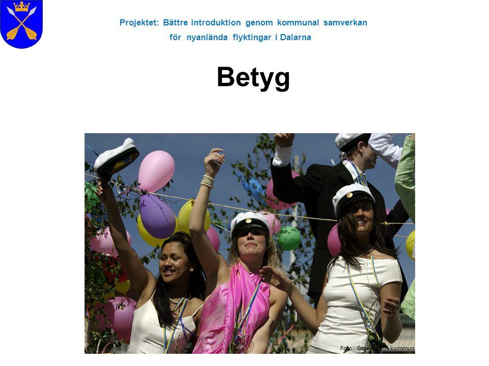 Projektet: Bättre introduktion genom kommunal samverkan för nyanlända flyktingar i Dalarna Betyg Foto: Östersunds kommun