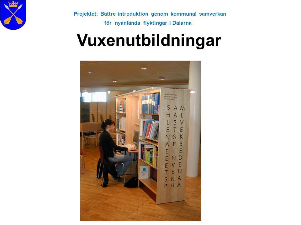 Projektet: Bättre introduktion genom kommunal samverkan för nyanlända flyktingar i Dalarna Vuxenutbildningar
