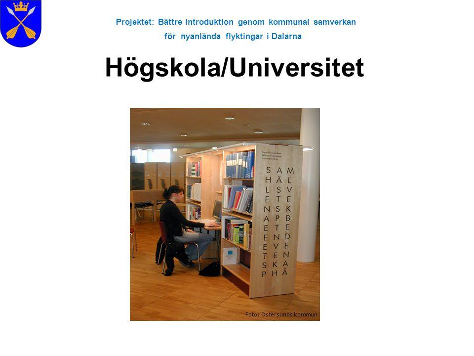 Projektet: Bättre introduktion genom kommunal samverkan för nyanlända flyktingar i Dalarna Högskola/Universitet Foto: Östersunds kommun