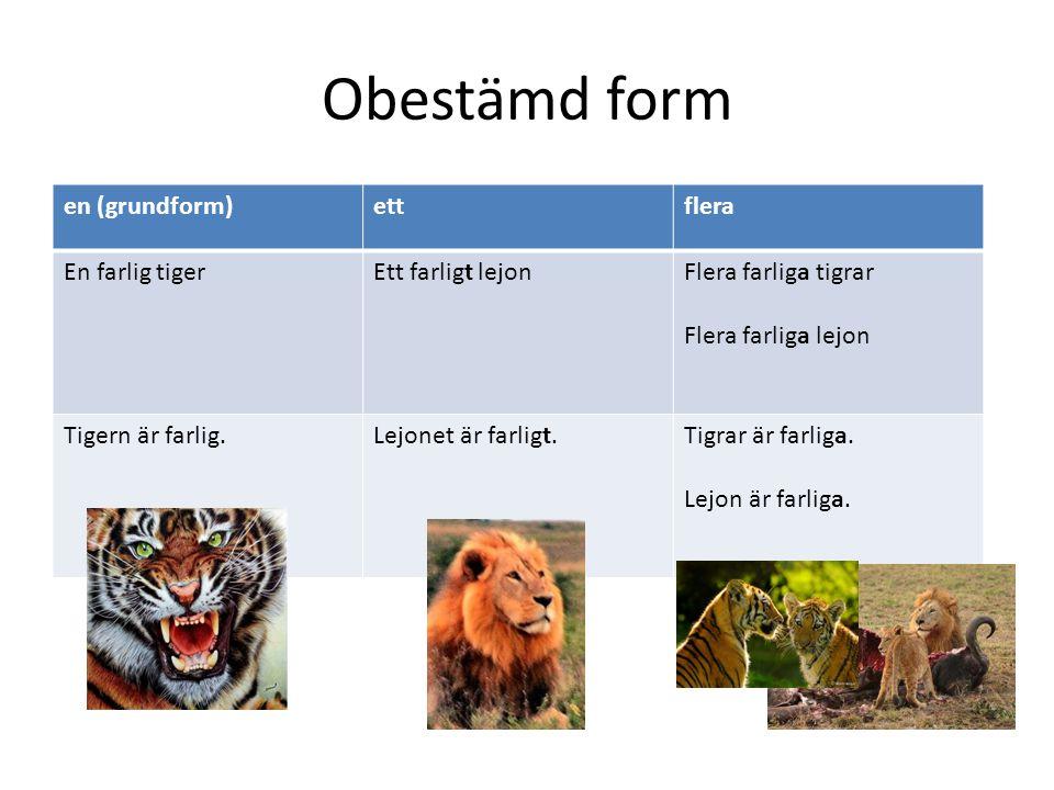 Obestämd form en (grundform)ettflera En farlig tigerEtt farligt lejonFlera farliga tigrar Flera farliga lejon Tigern är farlig.Lejonet är farligt.Tigr