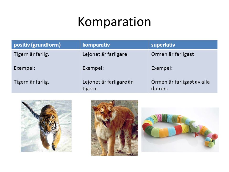 Komparation positiv (grundform)komparativsuperlativ Tigern är farlig. Exempel: Tigern är farlig. Lejonet är farligare Exempel: Lejonet är farligare än