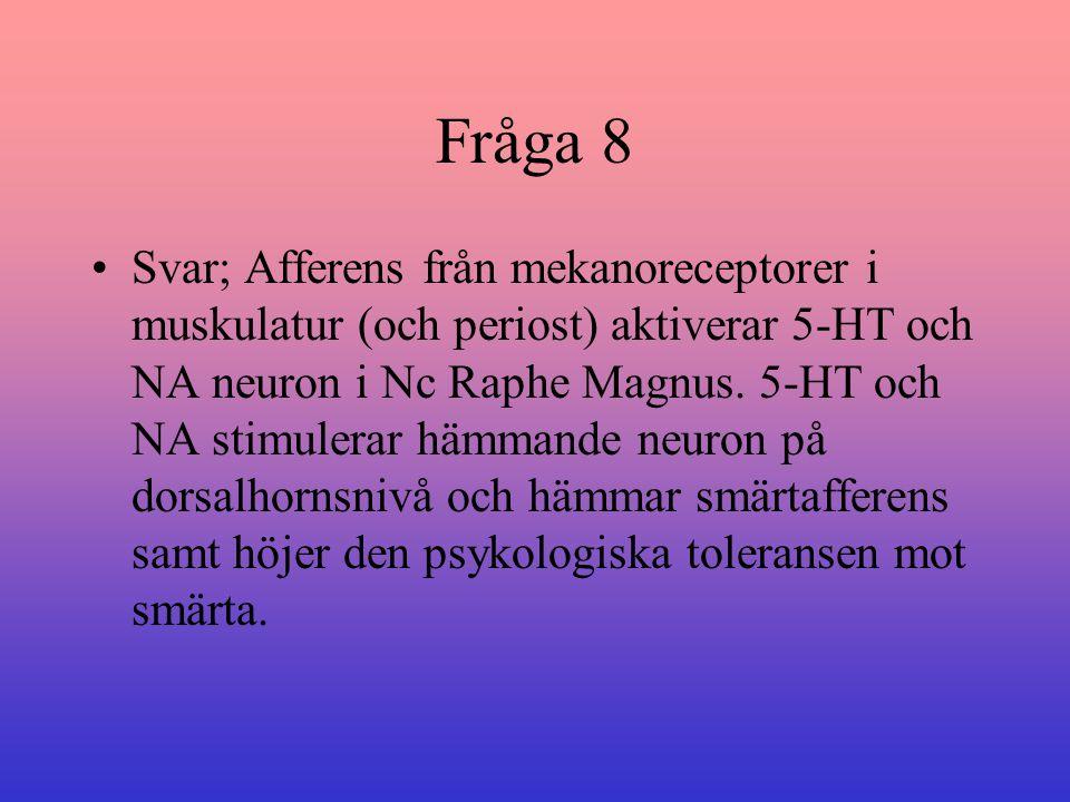 Fråga 8 Svar; Afferens från mekanoreceptorer i muskulatur (och periost) aktiverar 5-HT och NA neuron i Nc Raphe Magnus. 5-HT och NA stimulerar hämmand