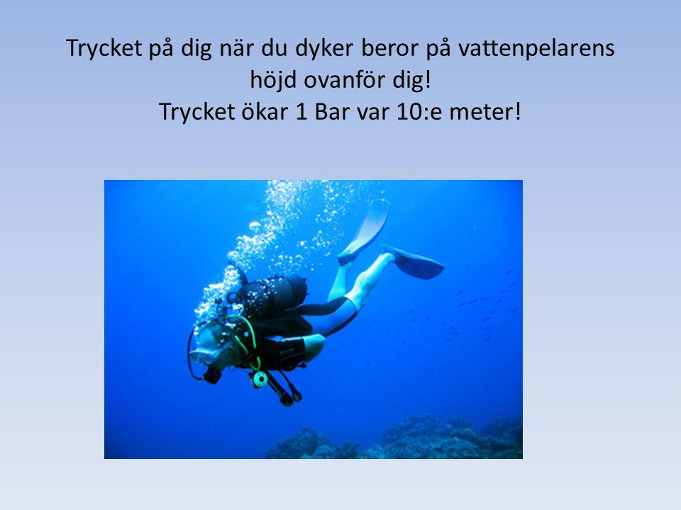Trycket på dig när du dyker beror på vattenpelarens höjd ovanför dig! Trycket ökar 1 Bar var 10:e meter!